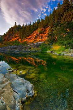 Eel River, Smithe Redwood Forest, California