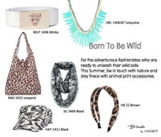 Born to be wild20140611
