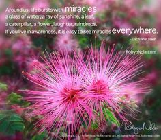 images of flowers with quotes - Google Search