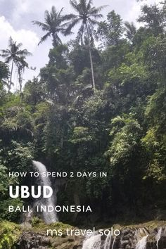 Have you been to Ubud in Bali, Indonesia? With the perfect itinerary, you can see all the must see attractions in Ubud in 2 days. Ubud, Amazing Destinations, Travel Destinations, Travel Guides, Travel Hacks, Travel Tips, Bali Travel, Southeast Asia, Travel Around