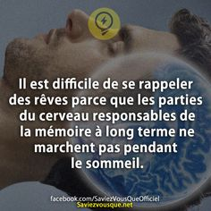 Saviez Vous Que? | Category Archive | Saviez-vous que ? Bff Quotes, Funny Quotes, Motivational Messages, Inspirational Quotes, Good To Know, Did You Know, French Quotes, Lucid Dreaming, True Facts