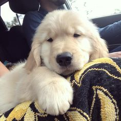 #TBT to the car ride home