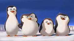 The Penguins of Madagascar by Xan-Xel on DeviantArt Penguin Images, Penguin Art, Dreamworks Animation, Disney And Dreamworks, Madagascar Movie, Arctic Penguins, Drawing Challenge, Disney Wallpaper, Disney Drawings
