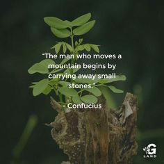 The man who moves a mountain begins by carrying away small stones. #quote