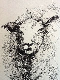 RACHEL COLLIER-WILSON ART Pen and ink drawing of a sheep