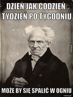 Schopenhauer Stupid Funny Memes, Wtf Funny, Funny Quotes, Funny As Hell, Funny Love, Funny Facts About Girls, Funny Images, Funny Pictures, Mal Humor