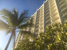 Last day in Miami Last day in Miami #thedrivetodoit!