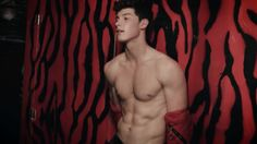 Shawn Mendes and His Abs Are So Mesmerizing, We Had to Make GIFs