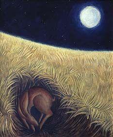 Hare in cornfield by Hannah Giffard