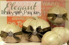 Turning Plain Pumpkins Into Elegant Centerpieces For Thanksgiving