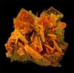 Wulfenite with Mimetite, San Francisco Mine, Cucurpe, Sonora, Mexico. 4″ wide.