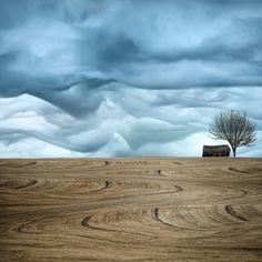 Artful Farmland