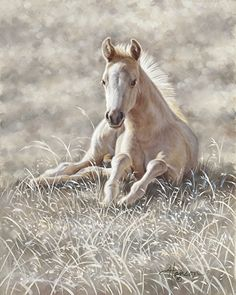"Lazy Boy by Ann Hanson Oil ~ 10"" x 8"""