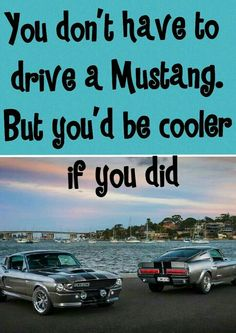 Stang Mustang Old, Make Easy Money, Car Insurance, Pony, Cool Stuff, Classic, Mustangs, Cars, Pony Horse