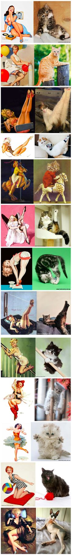 """Another day, another batch of funny cat pictures. This unique photo series, titled """"Cats That Look Like Pin Up Girls"""" pairs the voluptuous ladies from the 1940s - 1950s calendars and magazines with several adorable cats."""