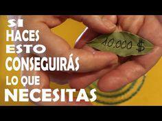 Hechizo para Atraer Dinero, con hojas de laurel Abundancia, Prosperidad y Riqueza Amarre de Laurel - YouTube