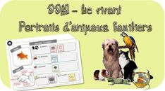 DDM le vivant -cycle 1 : Portraits d'animaux Primary Science, Science Curriculum, Social Science, French School, French Class, Teaching French Immersion, Living And Nonliving, Cycle 1, Learning Goals