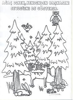 Orman Haftası...Cannur HAZNEDAR