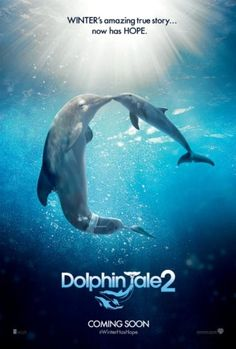 Dolphin Tale 2 - The team of people who saved Winter`s life reassemble in the wake of her surrogate mother`s passing in order to find her a companion so she can remain at the Clearwater Marine Hospital.  - Rating: PG