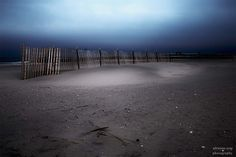 Still Protecting I by Adrienne Scap Sand Beach, Color Photography, Fencing, Dune, Be Still, Fine Art America, Sidewalk, Wall Art, Twitter