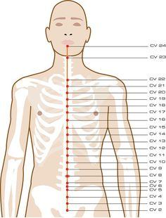 liver meridian sedating points The meridians these pathways are which is one of the reasons why figure8's are so great for your energy sedating triple warmer and strengthening spleen.