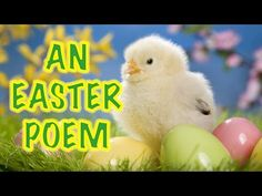 The Truth About Easter | POEM - YouTube