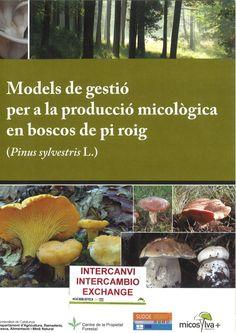Disponible també al Centre de Documentació del Parc http://catalegbeg.cultura.gencat.cat/iii/encore/record/C__Rb1506380