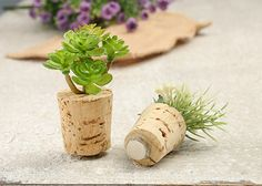 Not sure what to do with your wine corks? Create a set of magnets for your refrigerator! This 5-minute DIY is a great way to organize your kitchen and add a touch of personal flair.
