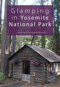 Go Glamping at Evergreen Lodge in Yosemite National Park!