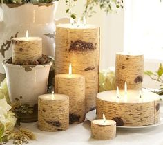 In love with these birch-inspired candles. I have one from Pottery Barn, and it is just too pretty to burn!