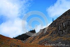 A mountain slope view with a blue sky background, enough space for text or other graphics, charts etc...