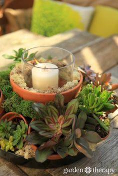 Make this gorgeous outdoor centerpiece with terracotta pots, succulents and a candle
