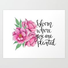 Bloom where you are planted n.1 Art Print