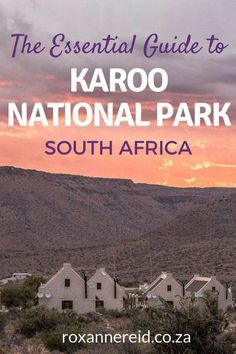The ultimate guide with everything you need to know about the Karoo National Park near Beaufort West, South Africa: how to get there, what to see, best time to visit, Karoo park accommodation, Karoo accommodation, Karoo park #Karoo #travel #KarooNationalP