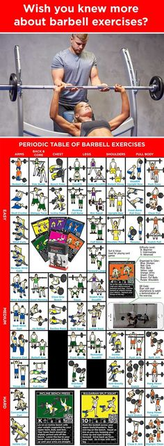 Periodic Table of Barbell Exercises Weight Training, Weight Lifting, Weight Loss, Lose Weight, Fitness Motivation, Fitness Tips, Exercise Motivation, Barbell Exercises, Weight Exercises