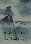 Link to free lesson plans for The Witch of Blackbird Pond.