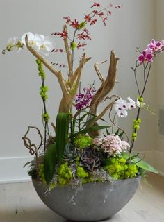 Succulents | orchids together with driftwood and moss