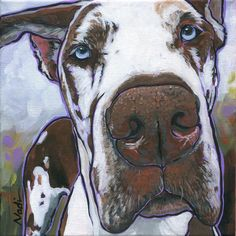 Great Dane Painting - Klymaxx by Nadi Spencer Merle Great Danes, Blue Great Danes, Weimaraner, Great Dane Temperament, Great Dane Puppy, Dane Dog, Cow Art, Dog Paintings, Animal Drawings