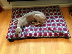 KosiPet Red Plaid Fleece Extra Large Spare Cover For Dog BedPet Bed -- Read more  at the image link. (Note:Amazon affiliate link)