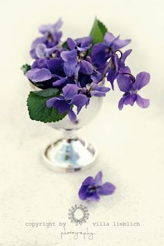 I just put some wild violets in an antique crystal perfume bottle and am so pleased with the effect!