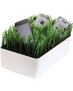 This grassy patch charges your cell phones, media players, and cameras. Get it here: http://www.bhg.com/shop/kikkerland-kikkerland-grass-charging-station-p50d4ec05e4b0b696be1763af.html?mz=a