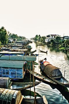 Hue Village in Vietnam surely must be one of the most peaceful places to live. They're probably never woken up by troublesome noisy neighbours!