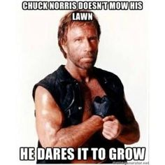 The 18 Funniest Chuck Norris Jokes of All Time Lol, Haha Funny, Funny Memes, Hilarious, Funny Stuff, Funny Signs, Stupid Funny, Chuck Norris Memes, Walker Texas Rangers