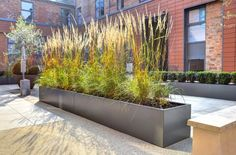 Bespoke powder coated steel planters at The Old Library, Leamington Spa