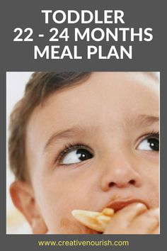 The Nutrient-Packed Toddler 22 - 24 Months Sample Meal Plan. #mealplan #toddlermeal #toddlerfood #toddlernutrition #toddlerfoodidea Toddler Dinner Recipes, Toddler Meals, Healthy Cake Recipes, Fruit Recipes, Toddler Oatmeal Recipe, Meal Plan For Toddlers, Oatmeal Banana Bread, Toddler Nutrition, Food Handling