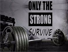 GYM WALL DECAL - MOTIVATIONAL WALL DEAL HOME GYM - ONLY THE STRONG SURVIVE