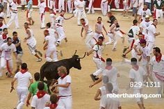 Crowds in the bullring during the annual festival of San Fermin (The Running of the Bulls) in Pamplona, Navarra, Euskadi, Spain, Europe