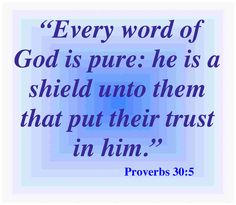 pictures of kjv bible verses   Proverbs 30.5 Bible Verse