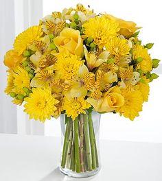 cushion-pom-chrysanthemum