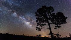 DARK SKY IN CANARIAS. as tienen unos de los mejores cielos a nivel mundial para realizar observaciones espaciales, de ahí que tengan instalaciones en las islas para estos fines con representación de multitud…